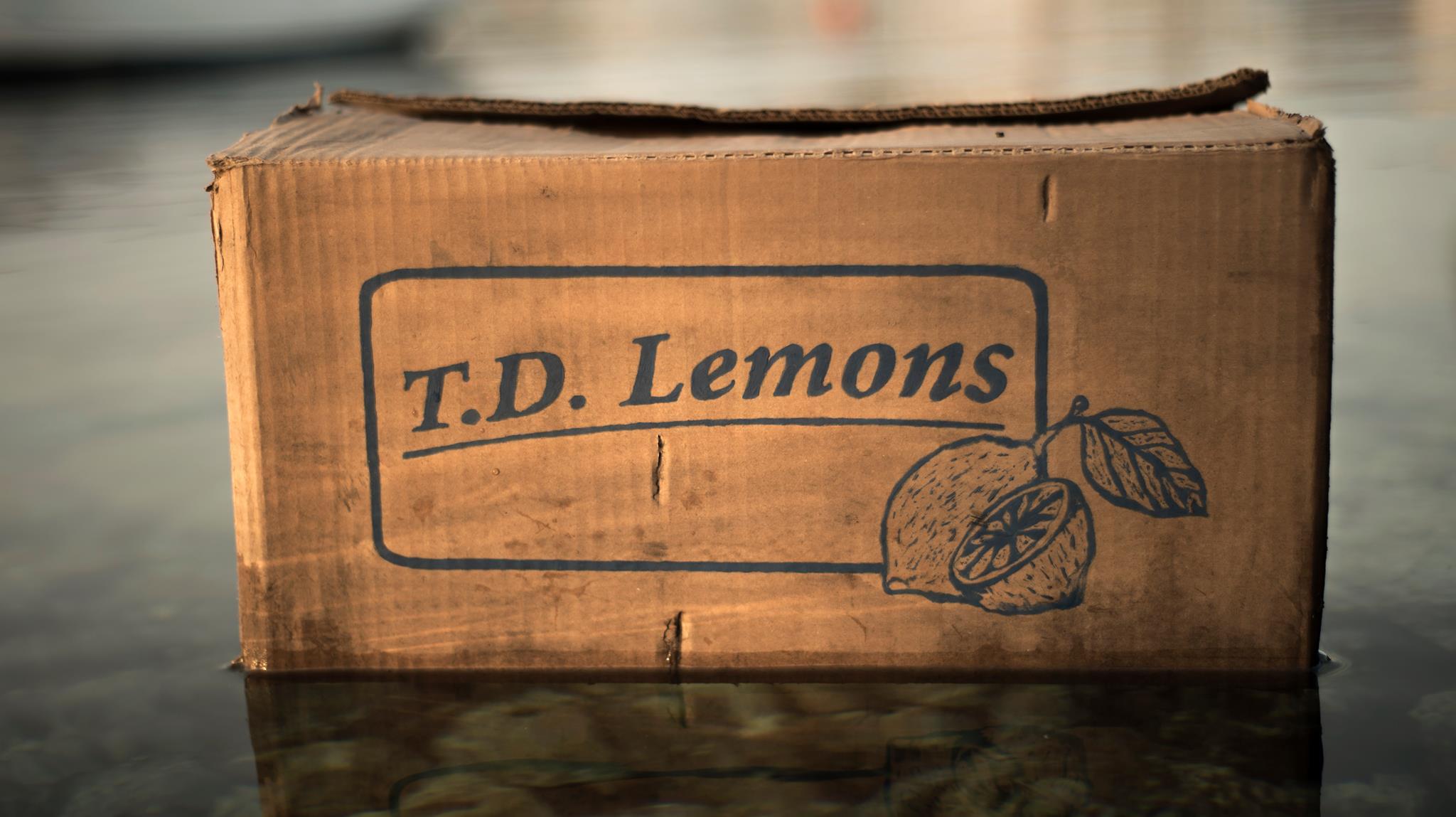 Lemon Play